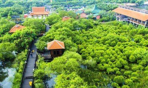 Benarkah Mangrove Wonorejo Menjadi Area Timbunan Sampah Plastik?